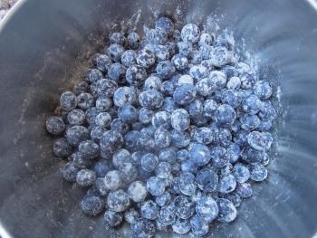floured blueberries