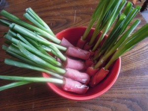green onion wraps in bowl